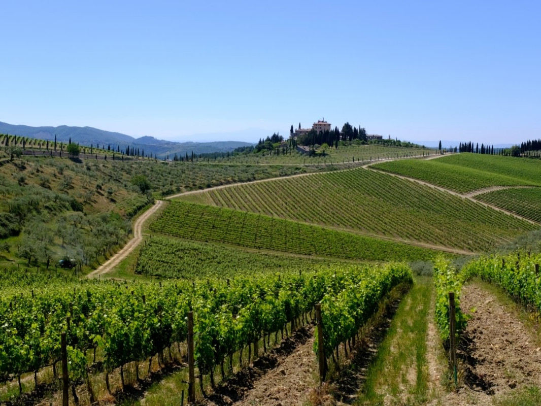 CHIANTI AFTERNOON TOUR